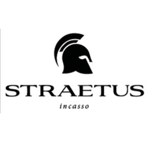 Afbeeldingsresultaat voor straetus, nl,. logo